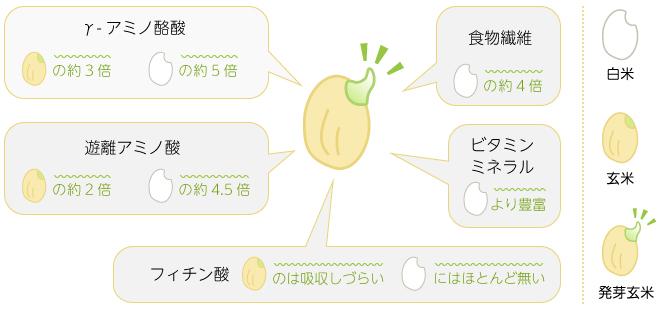 発芽玄米の成分説明図